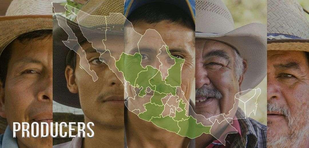 Herkunft des Mezcal – mexikanische Bundesstaaten
